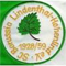 Borussia Lindenthal-Hohenlind IV