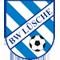 SV Blau-Weiß Lüsche