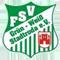 FSV Grün-Weiß Stadtroda