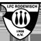 1. FC Rodewisch