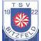 TSV Bitzfeld
