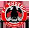 FC Phoenix Nagelsberg