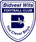 BIDVest Wits University