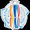 World Cup of Hockey