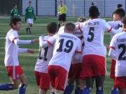 HSV siegt und verlässt die Abstiegsplätze