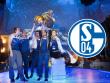 Welches Dota 2-Team kommt f�r Schalke in Frage?