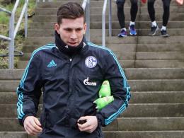 Pierre-Emile Höjbjerg, Schalke 04