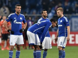 Joel Matip, FC Schalke 04