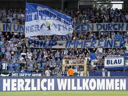 Bilder: Ibisevic h�lt Hertha auf Kurs