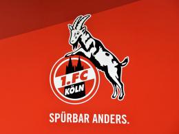 Doch kein Fan-Ausschluss: UEFA reduziert Kölns Strafe