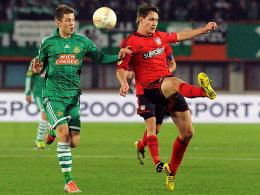 Bayers Türöffner: Verteidiger Wollscheid, hier gegen Wiens Alar, verantwortete das 1:0 für die Werkself.