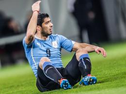 Kommt er rechtzeitig zur WM wieder auf die Beine? Uruguays Toptorjäger Luis Suarez.