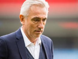 Van Marwijk nimmt Leckie und Kruse mit