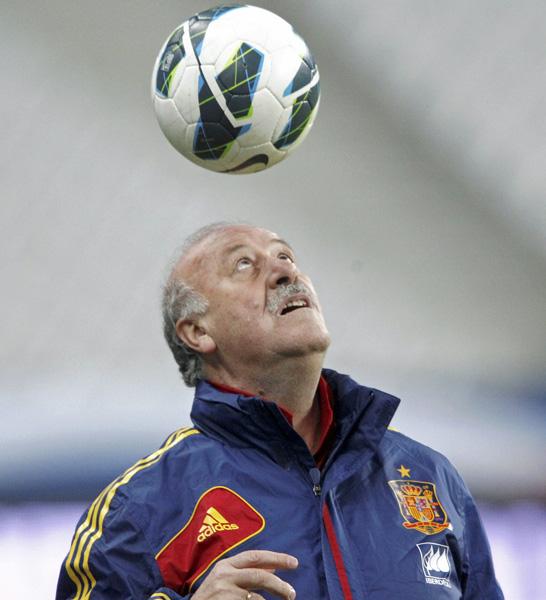 Vicente des Bosque, Trainer der spanischen Nationalmannschaft