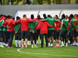 LIVE! Kamerun vs. Australien: Kruse darf starten