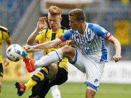 Gro�aspach holt Hoffenheims Hoffmann