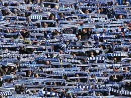 Magdeburg schlägt Bolton - Fans sorgen für Furore