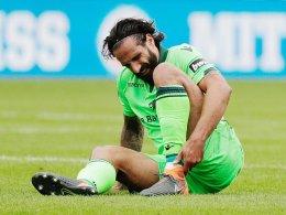 Grimaldi und die Löwen atmen auf
