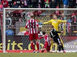 Toni Lindenhahn (Hallescher FC)