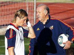 Fernando Torres und Vicente del Bosque