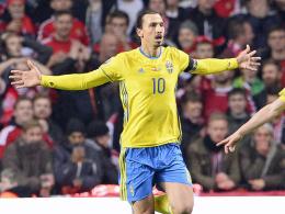 Ukraine und Schweden l�sen letzte EM-Tickets