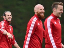 EM-Splitter: Bale gegen Starkult - Nowitzki f�r Schweden
