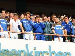 Nacktes Entsetzen und tiefe Enttäuschung: Schalkes Trainer Huub Stevens (Mitte) und seine Schützlinge.