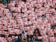 Fans pro 50+1