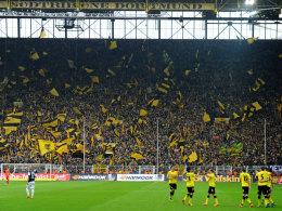 Begeisterung in Dortmund