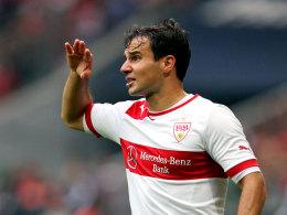 Tamas Hajnal (VfB Stuttgart)