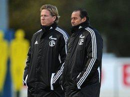 Huub Stevens und sein Nachfolger? Markus Gisdol (li.) gilt als der eigentliche Taktik-Experte im Schalker Trainer-Team.