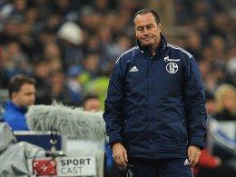 Platz sieben zur Winterpause: Schalke 04 hat sich von Huub Stevens getrennt.