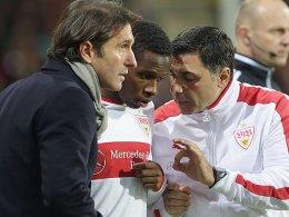 Bereit für das Derby: VfB-Coach Bruno Labbadia und Ibrahima Traoré (re. Co-Trainer Sözer).