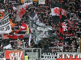 Eintracht Frankfurt Fans