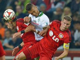 Packendes Spiel: Leverkusens Bender und Calhanoglu gegen Bremens Selke.
