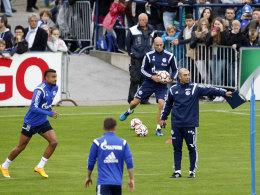 Da geht's lang: Schalkes Trainer Roberto di Matteo gibt den Takt an.