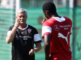 Klare Anweisungen: VfB-Trainer Armin Veh und Defensivspieler Antonio Rüdiger.