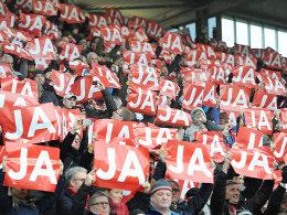 Unterst�tzer: Beim Spiel gegen Eintracht Frankfurt r�hrten die Freiburger Fans noch mal die Werbetrommel f�r das Projekt.