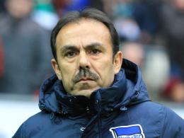 Ärgert sich über zu wenig Aggressivität: Hertha-Trainer Jos Luhukay.