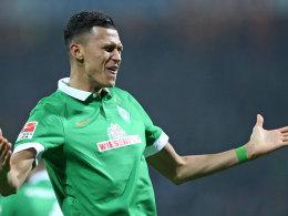 Davie Selke (Werder Bremen)