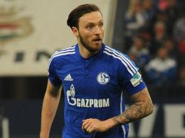 Zu fixiert auf eine Position? Schalkes Marco Höger.