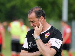 VfB-Coach Huub Stevens