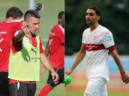 Vedad Ibisevic und Mohammed Abdellaoue (r.)