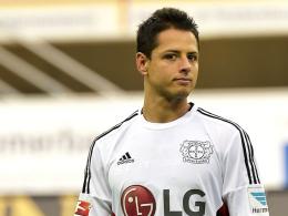 Nimmt zunächst auf der Bank Platz: Leverkusens Neuzugang Javier Hernandez.