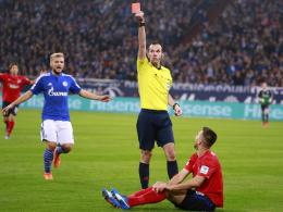 Wurde von Schiedsrichter Marco Fritz des Feldes verwiesen: Vedad Ibisevic.
