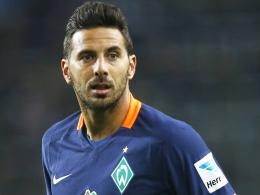 Darf auf einen Startelfeinsatz im Nord-Derby hoffen: Bremens Angreifer Claudio Pizarro.