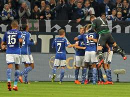 Ein guter Tag: Immer wieder freitags bleiben die Schalker zuhause ohne Gegentor.