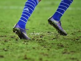 Hat ausgedient: Der Rasen in Schalkes Arena glich zuletzt einem Acker.