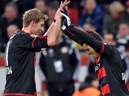 Leverkusen best�tigt: Kie�ling bleibt!