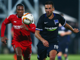 Vedad Ibisevic, Hertha BSC, Hannover 96, Marcelo